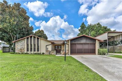 Spring Hill Single Family Home For Sale: 390 Telford Court