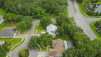 Tampa Single Family Home For Sale: 16102 Cadbury Court