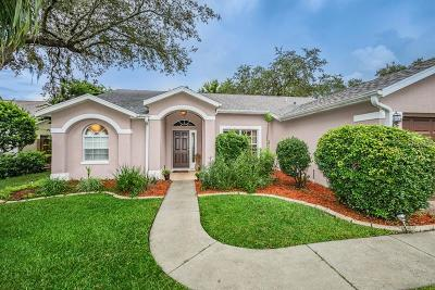 New Port Richey Single Family Home For Sale: 5652 Hereford Drive