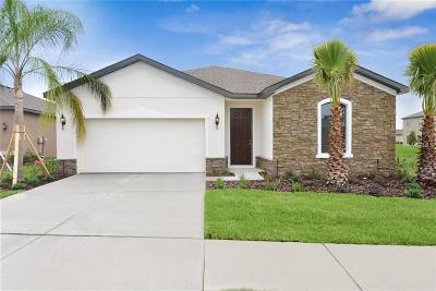 Riverveiw, Riverview, Riverview/tampa Single Family Home For Sale: 12212 Blue Pacific Drive
