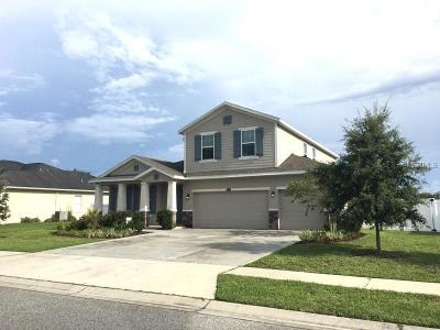 Hernando County Single Family Home For Sale: 13390 Weatherstone Drive