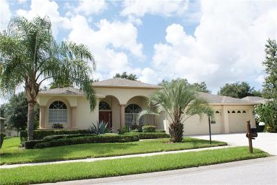 Pasco County Single Family Home For Sale: 18844 Grand Club Drive