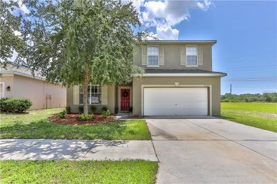 Brooksville Single Family Home For Sale: 14144 Holly Hammock Lane