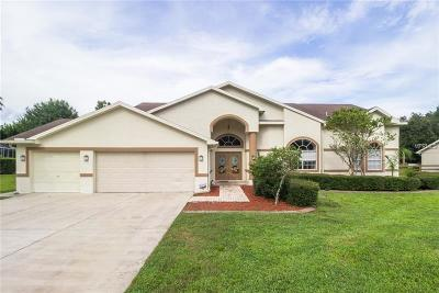 New Port Richey Single Family Home For Sale: 10709 Alico Pass