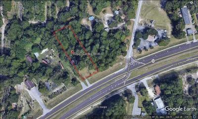 Hernando County Commercial For Sale: 15507 Cortez Boulevard