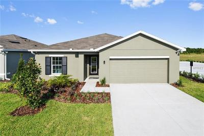 Wimauma Single Family Home For Sale: 14504 Haddon Mist Drive