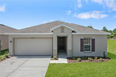 Wimauma Single Family Home For Sale: 14554 Haddon Mist Drive