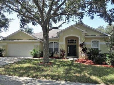Riverview Single Family Home For Sale: 12428 Windmill Cove Drive