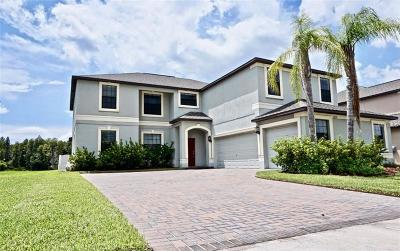 New Port Richey, New Port Richie Single Family Home For Sale: 12135 Crestridge Loop