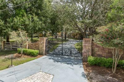 Tarpon Springs Single Family Home For Sale: 199 Old East Lake Road