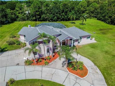 Tarpon Springs Single Family Home For Sale: 592 Appaloosa Road