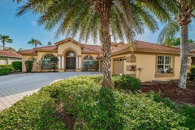 Trinity Single Family Home For Sale: 10530 Garda Drive