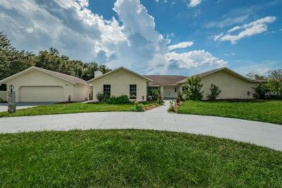 New Port Richey, New Port Richie Single Family Home For Sale: 2535 Meadowood Drive