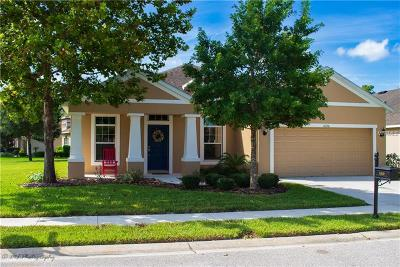 New Port Richey, New Port Richie Single Family Home For Sale: 11030 Cobbs Ferry Court