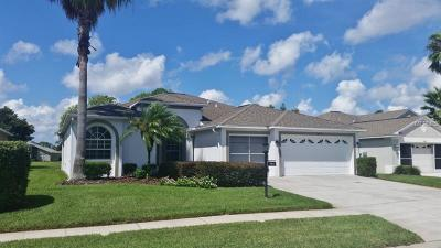 Pasco County Single Family Home For Sale: 18535 Gentle Breeze Court