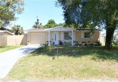 New Port Richey Single Family Home For Sale: 4534 Irene Loop