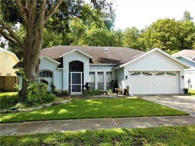 New Port Richey Single Family Home For Sale: 4607 Rowe Drive