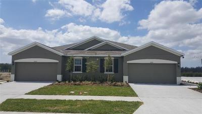 Land O Lakes, Land O Villa For Sale: 10584 Heron Hideaway Loop
