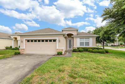 Hudson Single Family Home For Sale: 14746 Potterton Circle