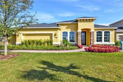 Riverveiw, Riverview, Riverview/tampa Single Family Home For Sale: 11626 Lake Lucaya Drive