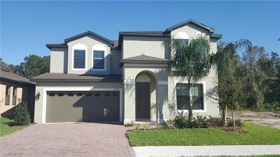 Riverveiw, Riverview, Riverview/tampa Single Family Home For Sale: 11634 Lake Lucaya Drive