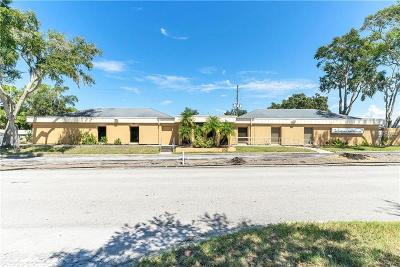 New Port Richey Commercial For Sale: 4219 Us Highway 19