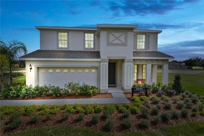 Kissimmee Single Family Home For Sale: 3127 Armstrong Drive