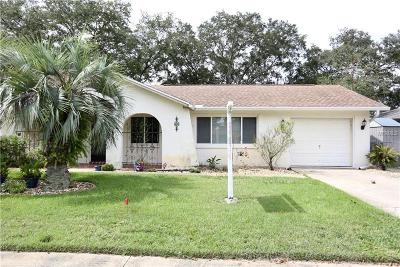 New Port Richey, New Port Richie Single Family Home For Sale: 4149 Cotton Tail Drive
