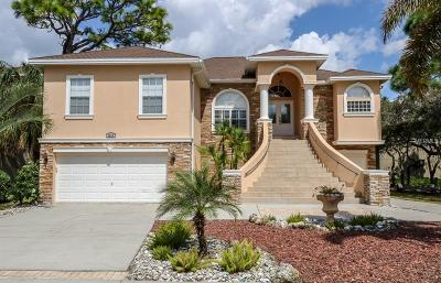 Tarpon Springs Single Family Home For Sale: 1212 Castle Terrace