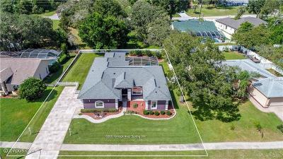 Spring Hill Single Family Home For Sale: 6085 Kinlock Avenue