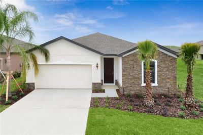Volusia County Single Family Home For Sale: 1410 Chelsea Manor Circle