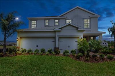 Volusia County Single Family Home For Sale: 1600 Chelsea Manor Circle