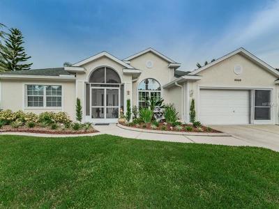 New Port Richey Single Family Home For Sale: 9840 Hermosillo Drive