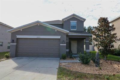 Spring Hill Single Family Home For Sale: 12523 Field Point Way