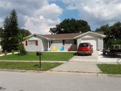 Tarpon Springs FL Rental For Rent: $2,600