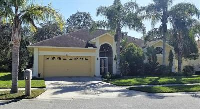 Hernando County, Hillsborough County, Pasco County, Pinellas County Single Family Home For Sale: 4524 Anaconda Drive