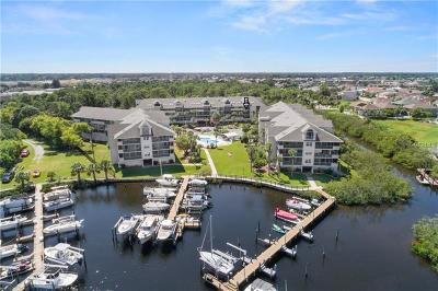New Port Richey Condo For Sale: 5537 Sea Forest Drive #206
