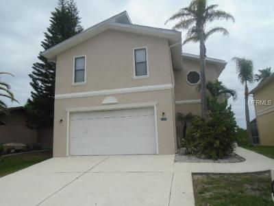 New Port Richey Single Family Home For Sale: 6410 Drake Court