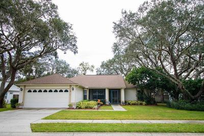 New Port Richey Single Family Home For Sale: 10134 Bozeman Drive