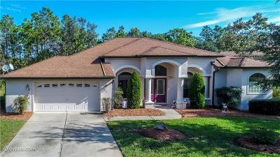 Homosassa Single Family Home For Sale: 12 Paw Paw Court S