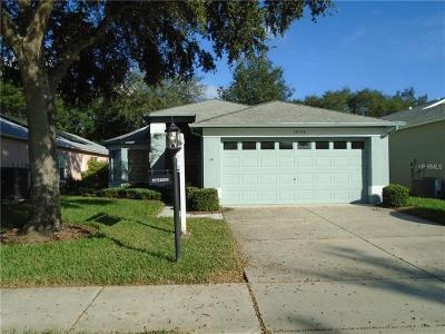Pasco County Single Family Home For Sale: 18046 Webster Grove Drive