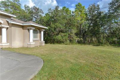 Weeki Wachee Single Family Home For Sale: 10427 Gypsy Avenue
