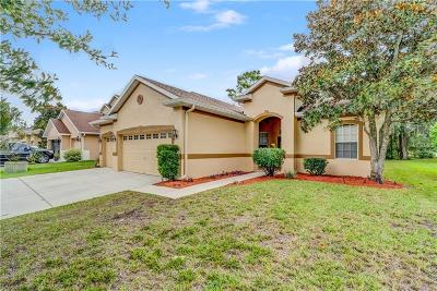 Spring Hill Single Family Home For Sale: 4697 Birchfield Loop