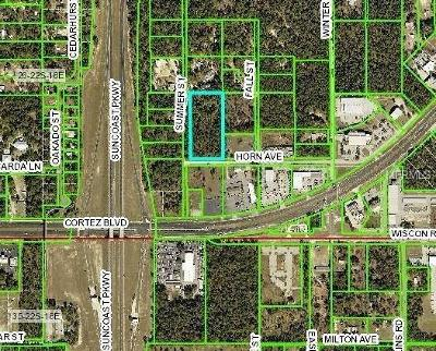 Brooksville Residential Lots & Land For Sale: Horn Avenue