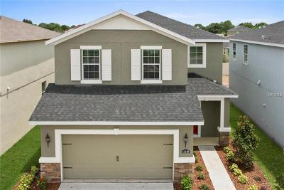 Volusia County Single Family Home For Sale: 1539 Chelsea Manor Circle
