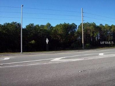 Pasco County Commercial For Sale: 0 Us Highway 19