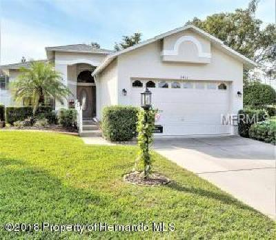 Hernando County Single Family Home For Sale: 2413 Fairskies Drive