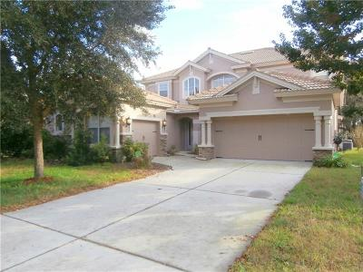 New Port Richey Single Family Home For Sale: 11748 Manistique Way