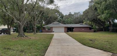 Tampa Single Family Home For Sale: 12510 Clydesdale Court