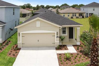 Riverveiw, Riverview, Riverview/tampa Single Family Home For Sale: 11609 Fringetree Court